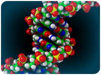 an image of the DNA sequence